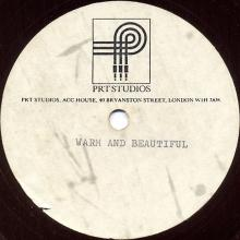 """1976 00 00 - WINGS - WARM AND BEAUTIFUL - PRT STUDIOS - 7"""" ONE SIDED - ACETATE - pic 1"""